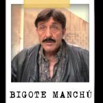 BIGOTE MANCHÚ